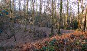 Trail Walk RETHEUIL - en forêt de Retz_76_dans les forêts de Retz et de Compiègne - Photo 15