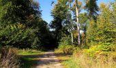 Trail Walk DAMPLEUX - en forêt de Retz_80_sur la Route Tortue et la Route Droite - Photo 101