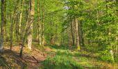 Randonnée Marche LONGPONT - en forêt de Retz_77_Longpont_Puiseux en Retz_AR - Photo 108