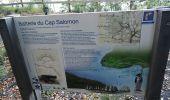 Randonnée Marche LES ANSES-D'ARLET - cap salomon - Photo 4