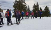Randonnée Raquettes à neige DIVONNE-LES-BAINS - La Dole alt 1676m en raquette - Photo 17