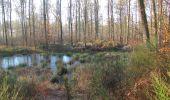 Trail Walk SAINT-JEAN-AUX-BOIS - en forêt de Compiègne_33_12_2019_les Tournantes de l'étang Saint-Jean et des Prés Saint-Jean - Photo 63