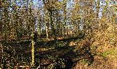 Trail Walk RETHEUIL - en forêt de Retz_76_dans les forêts de Retz et de Compiègne - Photo 41