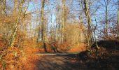 Trail Walk SAINT-JEAN-AUX-BOIS - en forêt de Compiègne_33_12_2019_les Tournantes de l'étang Saint-Jean et des Prés Saint-Jean - Photo 204