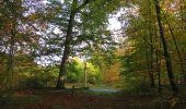 Trail Walk SAINT-JEAN-AUX-BOIS - en forêt de Compiègne_19_le Puits d'Antin_les Mares St-Louis_La Muette - Photo 133