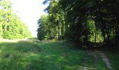 Randonnée A pied VILLERS-COTTERETS - le GR11A  dans la Forêt de Retz  - Photo 42