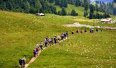 Trail Other activity Unknown - Nouveau 4guide - Photo 1