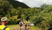 Trail Walk RIVIERE-SALEE - JOUBADIÈRE - MORNE CONSTANT - PAGERIE - Photo 42