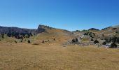 Randonnée Marche SAINT-AGNAN-EN-VERCORS - Pas des chatons  depuis la coche - Photo 2