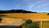 Randonnée Marche HARAMONT - en forêt de Retz_79_08_2019_vers Taillefontaine et Retheuil par les lisières - Photo 40