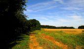 Randonnée Marche HARAMONT - en forêt de Retz_79_08_2019_vers Taillefontaine et Retheuil par les lisières - Photo 29