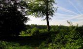 Randonnée Marche COYOLLES - en forêt de Retz_78_les rayons du Rond Capitaine - Photo 83