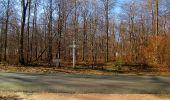 Trail Walk RETHEUIL - en forêt de Retz_76_dans les forêts de Retz et de Compiègne - Photo 87