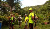 Trail Walk RIVIERE-SALEE - JOUBADIÈRE - MORNE CONSTANT - PAGERIE - Photo 32