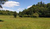 Trail Walk Havelange - De Havelange à Saint Fontaine par le village de Ossogne - Photo 7