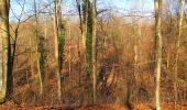 Trail Walk PIERREFONDS - en forêt de Compiègne_24_Tournantes sur le Voliard et sur la Fortelle_chaussée Brunehaut - Photo 41
