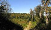 Trail Walk DAMPLEUX - en forêt de Retz_80_sur la Route Tortue et la Route Droite - Photo 8