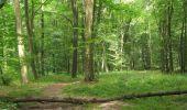 Randonnée Marche SAINT-JEAN-AUX-BOIS - en forêt de Compiègne_2_ruines gallo-romaines de Champlieu_les Petits Monts - Photo 106