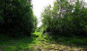 Randonnée Marche COYOLLES - en forêt de Retz_78_les rayons du Rond Capitaine - Photo 44