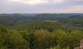 Randonnée Marche PHILIPPSBOURG - chateaux falckenstein - Waldeck - Photo 6