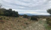 Randonnée Marche SAINT-REMY-DE-PROVENCE - La crête des Alpilles - Photo 10