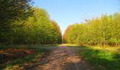 Randonnée Marche LONGPONT - en forêt de Retz_77_Longpont_Puiseux en Retz_AR - Photo 113