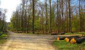 Randonnée Marche LONGPONT - en forêt de Retz_77_Longpont_Puiseux en Retz_AR - Photo 99