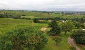 Trail Walk LE LOROUX-BOTTEREAU - 28 06 2020 le loroux - Photo 2