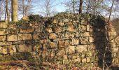 Randonnée A pied VILLERS-COTTERETS - le GR11A  dans la Forêt de Retz  - Photo 59