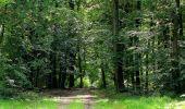 Randonnée Marche HARAMONT - en forêt de Retz_79_08_2019_vers Taillefontaine et Retheuil par les lisières - Photo 104