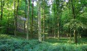 Randonnée Marche HARAMONT - en forêt de Retz_79_08_2019_vers Taillefontaine et Retheuil par les lisières - Photo 17