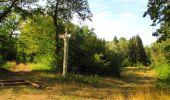 Randonnée Marche LACROIX-SAINT-OUEN - en forêt de Compiègne_35_la Croix Saint-Sauveur_le Ru du Goderu - Photo 66