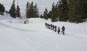 Randonnée Raquettes à neige DIVONNE-LES-BAINS - La Dole alt 1676m en raquette - Photo 1