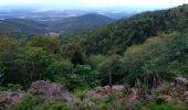 Trail Walk SENTHEIM - Sentheim Rossberg - Photo 18