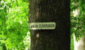 Randonnée Marche COYOLLES - en forêt de Retz_78_les rayons du Rond Capitaine - Photo 42