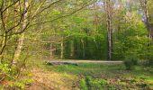 Randonnée Marche LONGPONT - en forêt de Retz_77_Longpont_Puiseux en Retz_AR - Photo 145