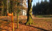 Randonnée A pied VILLERS-COTTERETS - le GR11A  dans la Forêt de Retz  - Photo 47