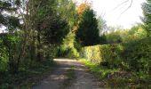 Randonnée Marche SAINT-JEAN-AUX-BOIS - en forêt de Compiègne_32_11_2019_les Tournantes de la Muette et sous la Tête Saint-Jean - Photo 194