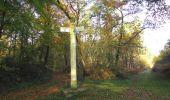 Randonnée Marche SAINT-JEAN-AUX-BOIS - en forêt de Compiègne_19_le Puits d'Antin_les Mares St-Louis_La Muette - Photo 85