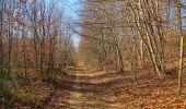 Trail Walk PIERREFONDS - en forêt de Compiègne_24_Tournantes sur le Voliard et sur la Fortelle_chaussée Brunehaut - Photo 136