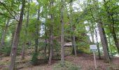 Randonnée Marche PHILIPPSBOURG - chateaux falckenstein - Waldeck - Photo 2