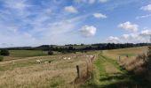 Randonnée Marche Sainte-Ode - saint ode - Photo 3