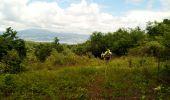 Trail Walk RIVIERE-SALEE - JOUBADIÈRE - MORNE CONSTANT - PAGERIE - Photo 17