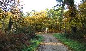 Randonnée Marche SAINT-JEAN-AUX-BOIS - en forêt de Compiègne_19_le Puits d'Antin_les Mares St-Louis_La Muette - Photo 71