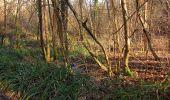 Trail On foot VIEUX-MOULIN - en forêt de Compiègne_23_la Grotte des Ramoneurs_le Mont Berny - Photo 31