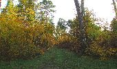 Randonnée Marche SAINT-JEAN-AUX-BOIS - en forêt de Compiègne_19_le Puits d'Antin_les Mares St-Louis_La Muette - Photo 19