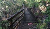 Randonnée Marche LES ANSES-D'ARLET - cap salomon - Photo 9