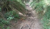 Trail Walk Gesves - 20190701 Strud - Photo 6