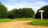 Randonnée Marche COYOLLES - en forêt de Retz_78_les rayons du Rond Capitaine - Photo 109