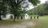 Randonnée Marche Havelange - Failon - Somal - Photo 8